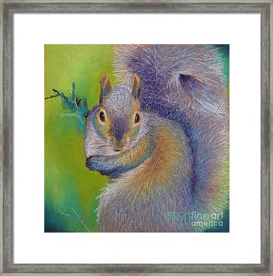 Moe Framed Print by Tracy L Teeter