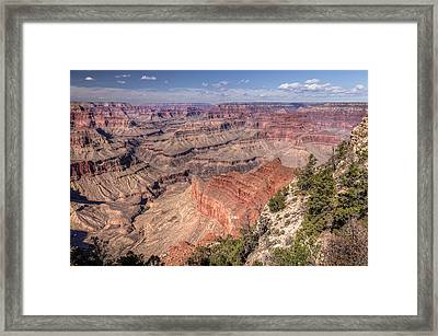 Framed Print featuring the photograph Mohave by John Gilbert