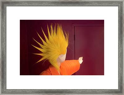 Mohawk Framed Print by Scott Meyer