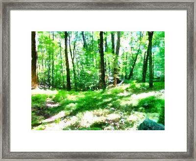 Framed Print featuring the photograph Mohegan Lake Forever Green by Derek Gedney