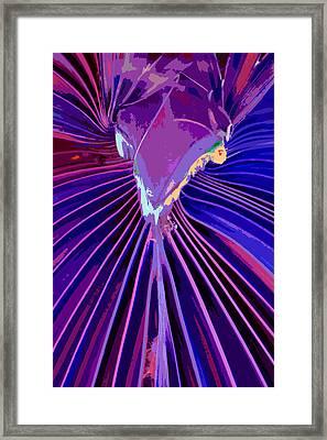 Mojo Workin' Framed Print by Stephen Anderson