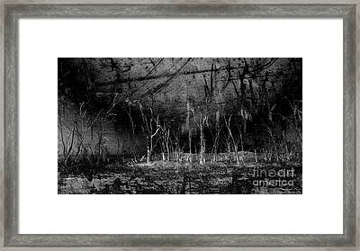 Framed Print featuring the photograph Mokoan by Linda Lees