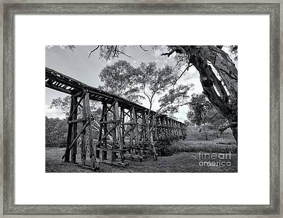 Framed Print featuring the photograph Mollisons Creek Trestle Bridge by Linda Lees