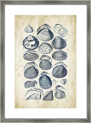 Mollusks - 1842 - 06 Framed Print by Aged Pixel