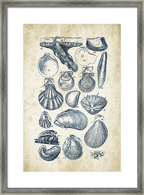 Mollusks - 1842 - 10 Framed Print