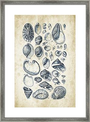 Mollusks - 1842 - 13 Framed Print by Aged Pixel
