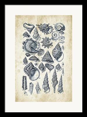 Invertebrate Digital Art Framed Prints