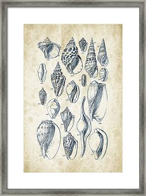 Mollusks - 1842 - 20 Framed Print