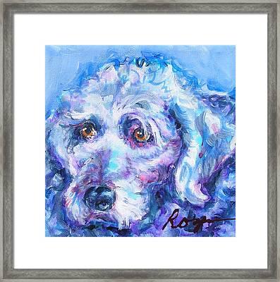 Molly Blue Framed Print