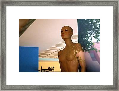 Molly Framed Print by Jez C Self