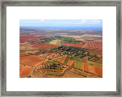 Molokai Cropland Framed Print