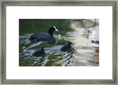 Mom And Babies Framed Print by Valia Bradshaw