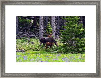 Mom And Baby Framed Print