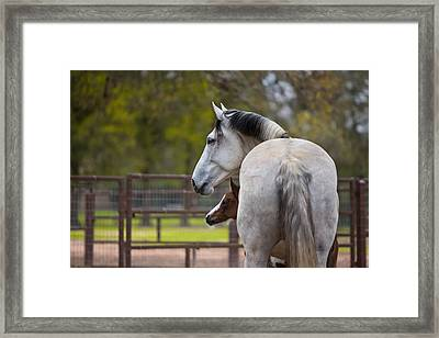 Framed Print featuring the photograph Mom And Baby by Sharon Jones