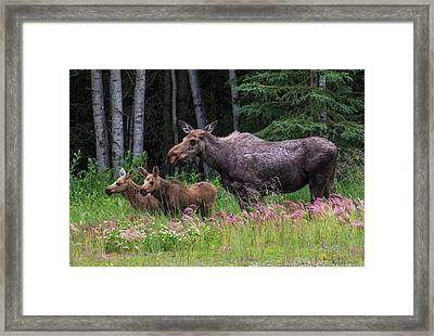 Mom And The Twins Framed Print
