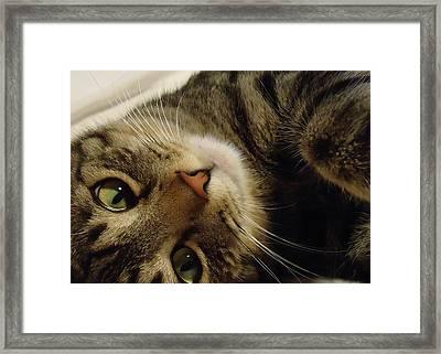Mom Likes Me Best Framed Print by Leslie Manley