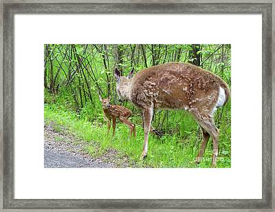 Mom With Twins Framed Print by Sandra Updyke