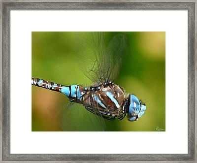 Moment In Time Framed Print