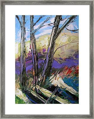 Moment Of Brightening Framed Print by John Williams