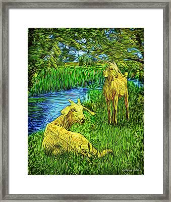 Moment Of Serenity Framed Print