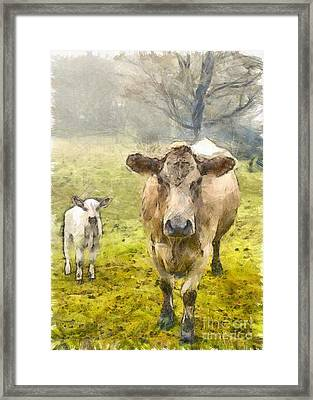 Momma And Baby Cow Pencil Framed Print by Edward Fielding