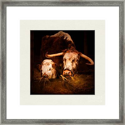 Momma And Her Baby. Framed Print by ShabbyChic fine art Photography