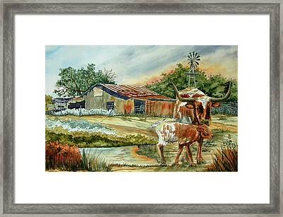 Momma Longhorn And Calf Framed Print