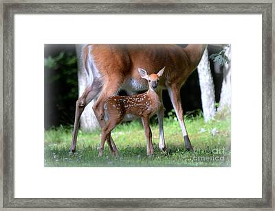 Mommy And Me Framed Print by Brenda Bostic