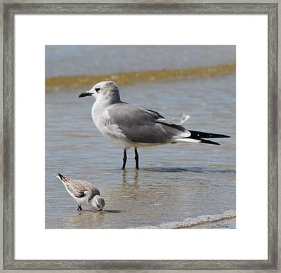 Mommy And Me Framed Print