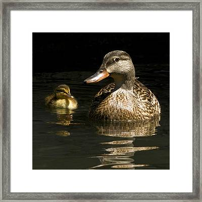 Framed Print featuring the photograph Mommy And Me by Thanh Thuy Nguyen