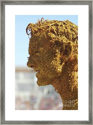 Mom's Golden Boy Framed Print by Allen Simmons