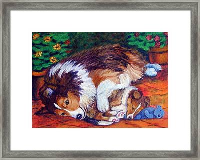 Mom's Love - Shetland Sheepdog Framed Print