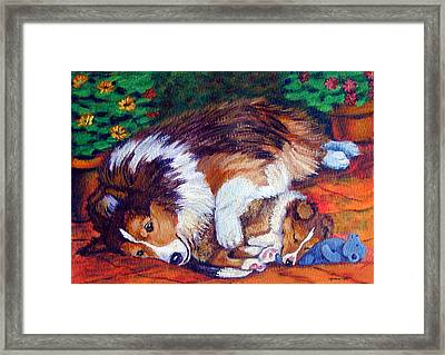 Mom's Love - Shetland Sheepdog Framed Print by Lyn Cook
