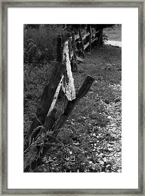 Framed Print featuring the photograph Momsvisitfence2 by Curtis J Neeley Jr