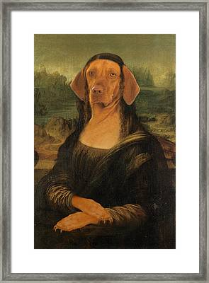 Mona Visla Framed Print by Galen Hazelhofer