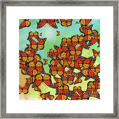 Monarch Butterflies Framed Print by Gaspar Avila