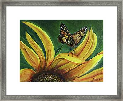 Monarch Butterfly On A Sunflower Framed Print by Silvia Philippsohn