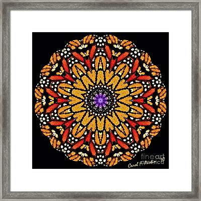 Monarch Butterfly Wings Kaleidoscope Framed Print by Carol F Austin