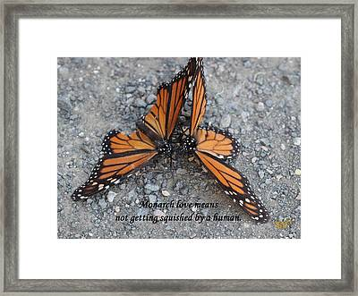 Monarch Love Means Not Getting Squished  Framed Print