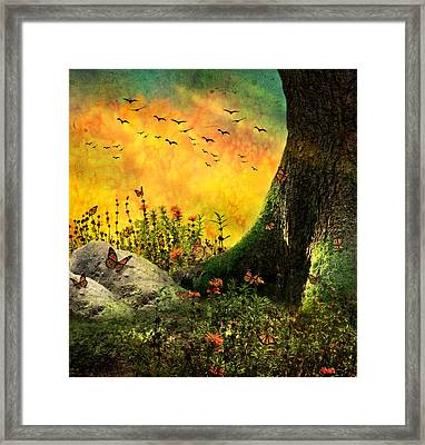 Monarch Meadow Framed Print