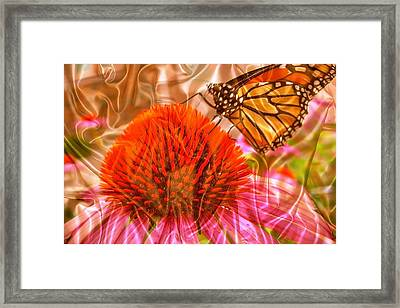 Monarch Mirage Framed Print