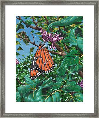 Monarch Muse Framed Print