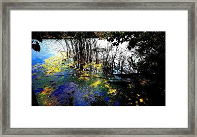 Monet Ice Age Pond Framed Print