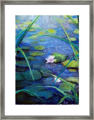 Monets Garden Framed Print