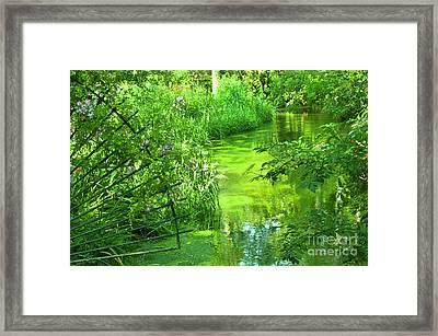Monet's Green Garden Framed Print