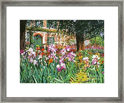 Monet's Irises Framed Print by David Lloyd Glover