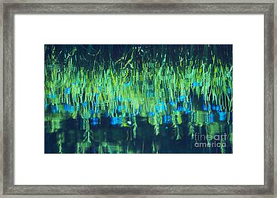 Monetta Framed Print by Aimelle