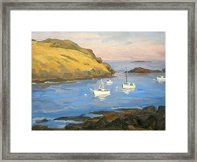 Monhegan Morning Framed Print