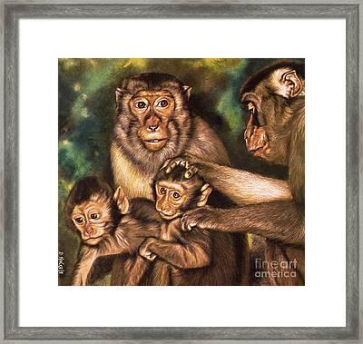 Monkey Family Framed Print