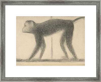 Monkey Framed Print by Georges-Pierre Seurat